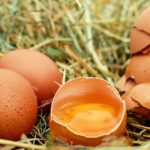 Sanovnik jaja – Šta znači sanjati jaja?
